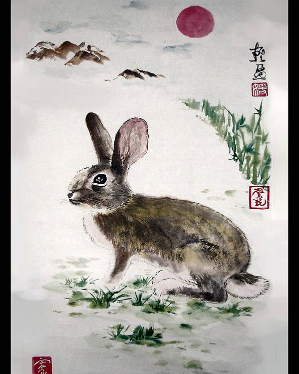 Rabbit Poster featuring the painting Peaceful by Lilian Storino