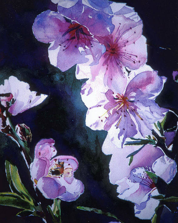 Peach Blossoms Poster featuring the painting Peach Blossoms by Linda Pullinsi