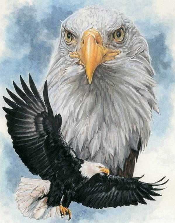 Bald Eagle Poster featuring the mixed media Peerless by Barbara Keith