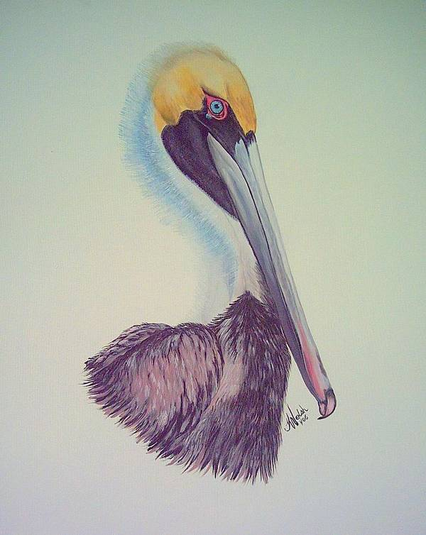 Pelican Poster featuring the painting Pelican Prince by Kathern Ware