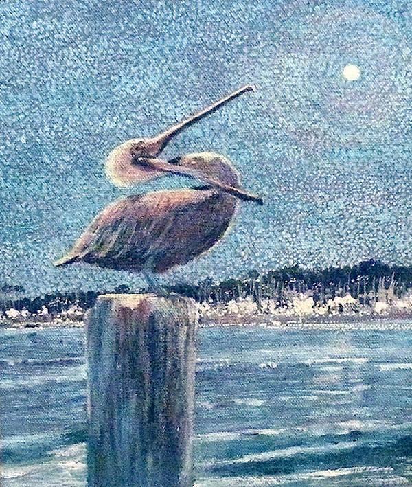 Water Poster featuring the painting Pelikan At Night Santa Barbara Harbor by Wendy Hill