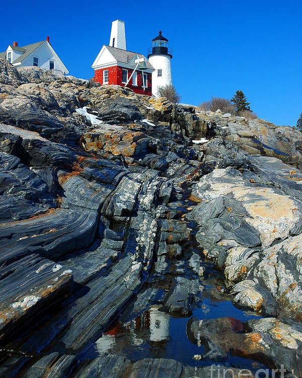 Coastline Poster featuring the photograph Pemaquid Point Lighthouse Reflection - Seascape Landscape Rocky Coast Maine by Jon Holiday