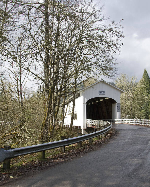 Pengra Bridge; Covered Bridge; Fall Creek; Oregon; Spring; Vertical Poster featuring the photograph Pengra Covered Bridge by John Higby