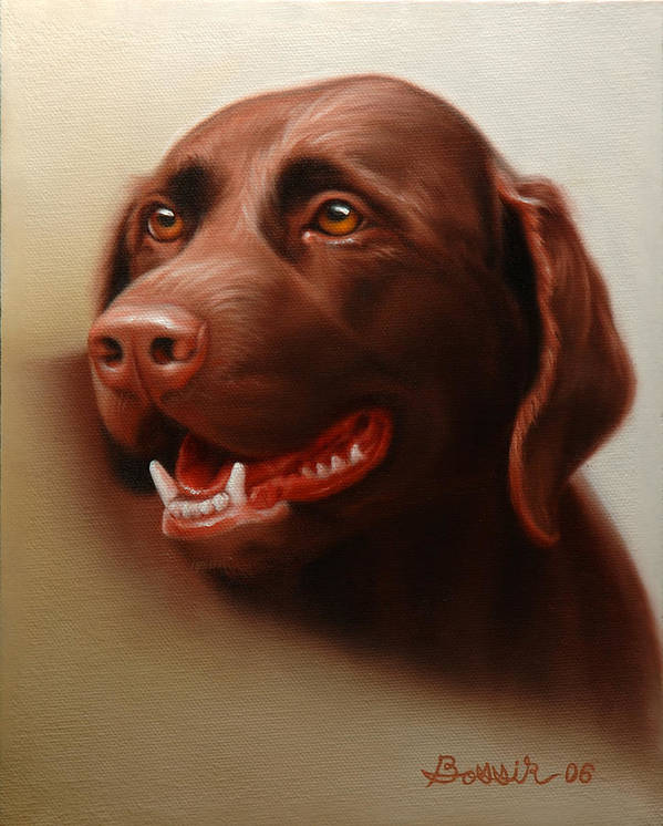 Chocolate Labrador Poster featuring the painting Pet Portrait of a Chocolate Labrador by Eric Bossik
