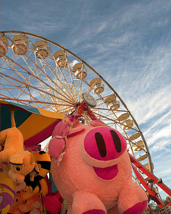 Pigs Poster featuring the photograph Pigs And Puppies And Ferris Wheel - Oh My by Mitch Spence
