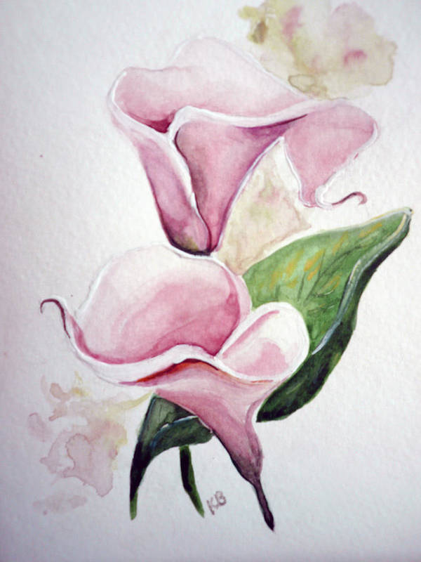 Botanical Painting Pink Paintings Calla Paintings Lily Paintings Flower Paintings Floral Paintings Flora Pink Flower Lily Poster featuring the painting Pink Callas by Karin Dawn Kelshall- Best