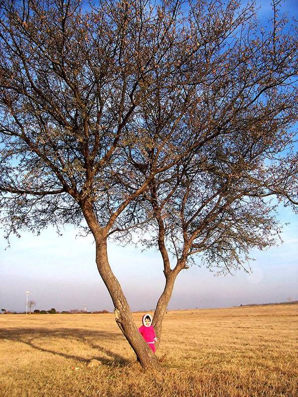 Figure Poster featuring the photograph Pink Field Gnome by Caroline Urbania Naeem