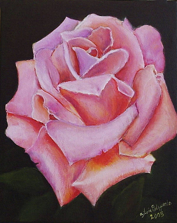 Rose Poster featuring the painting Pink Rose by Silvia Philippsohn