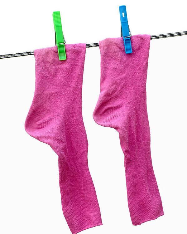 Frank Tschakert Poster featuring the photograph Pink Socks by Frank Tschakert