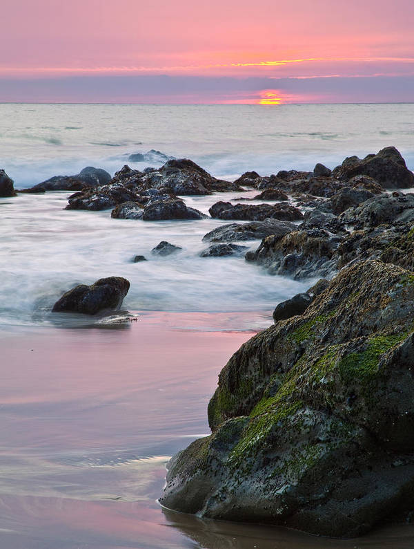 Beaches Poster featuring the photograph Pink Sunset by Greg Clure