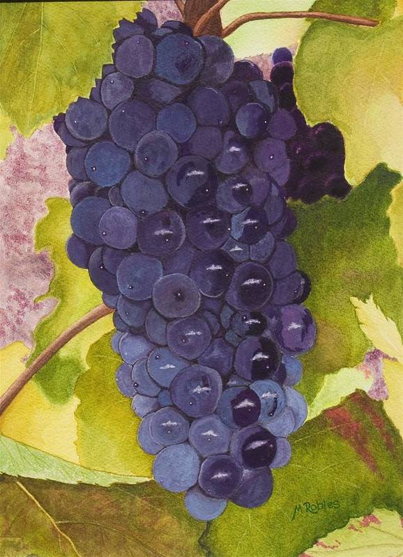 Grapes Poster featuring the painting Pinot Noir Ready For Harvest by Mike Robles