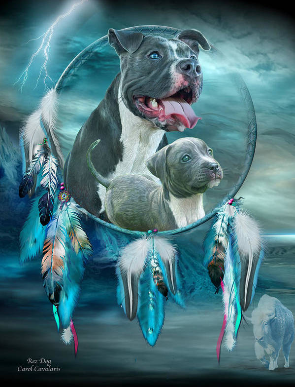 Rez Dog Cover Art Poster featuring the mixed media Pit Bulls - Rez Dog by Carol Cavalaris