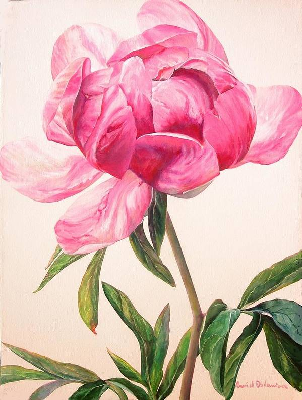 Floral Painting Poster featuring the painting Pivoine 1 by Muriel Dolemieux