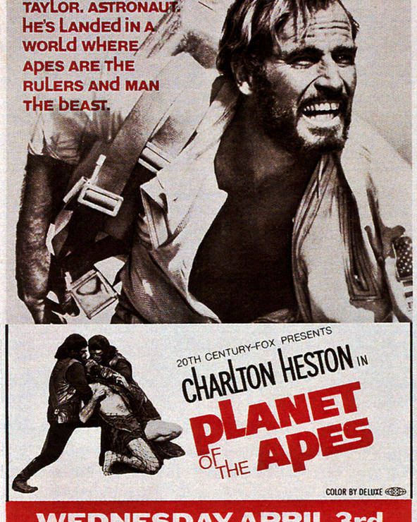 1960s Movies Poster featuring the photograph Planet Of The Apes, Top Charlton by Everett