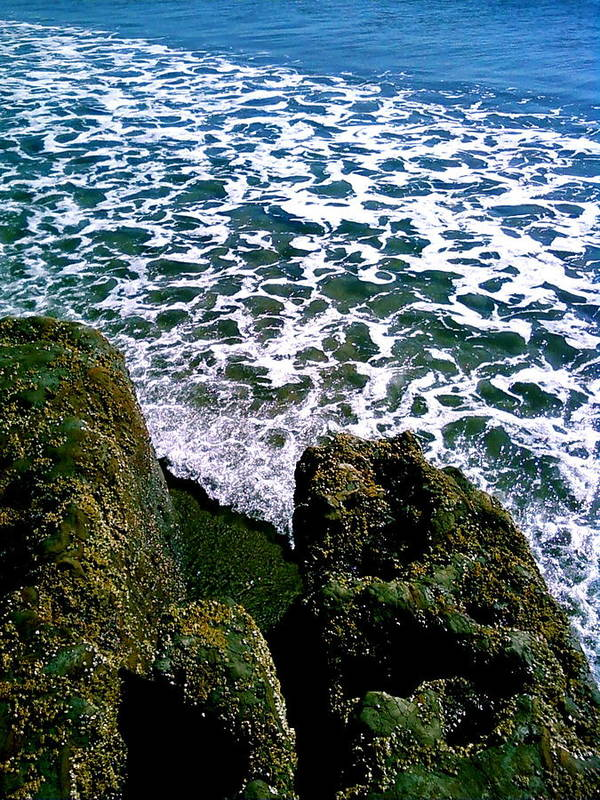 Photograhy Poster featuring the photograph Point Reyes Pt. 2 by Jeff DOttavio