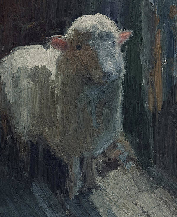 Lamb Poster featuring the digital art Poor Lamb by Yury Malkov