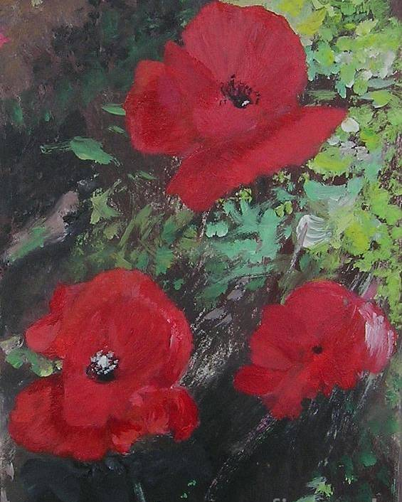 Red Poster featuring the painting Poppies by Lizzy Forrester
