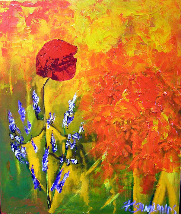 Poppies Poster featuring the painting Poppies by Paul Sandilands