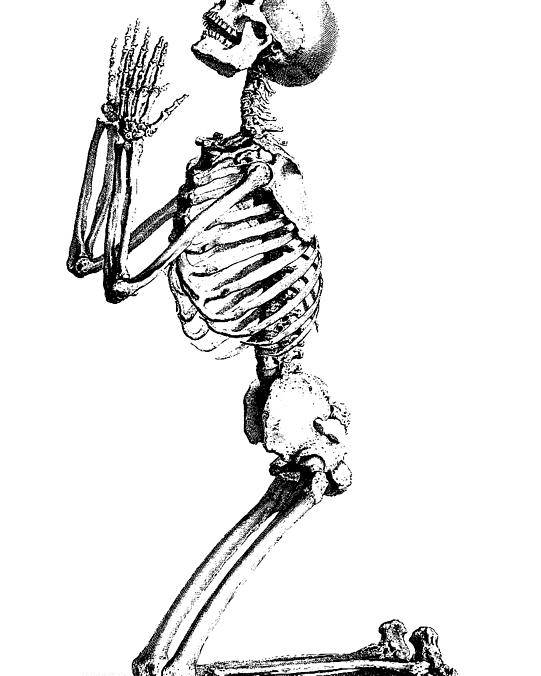 b9b2a5725 Praying Skeleton Poster featuring the drawing Praying Skeleton by William  Cheselden