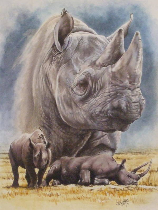 Wildlife Poster featuring the mixed media Precarious by Barbara Keith