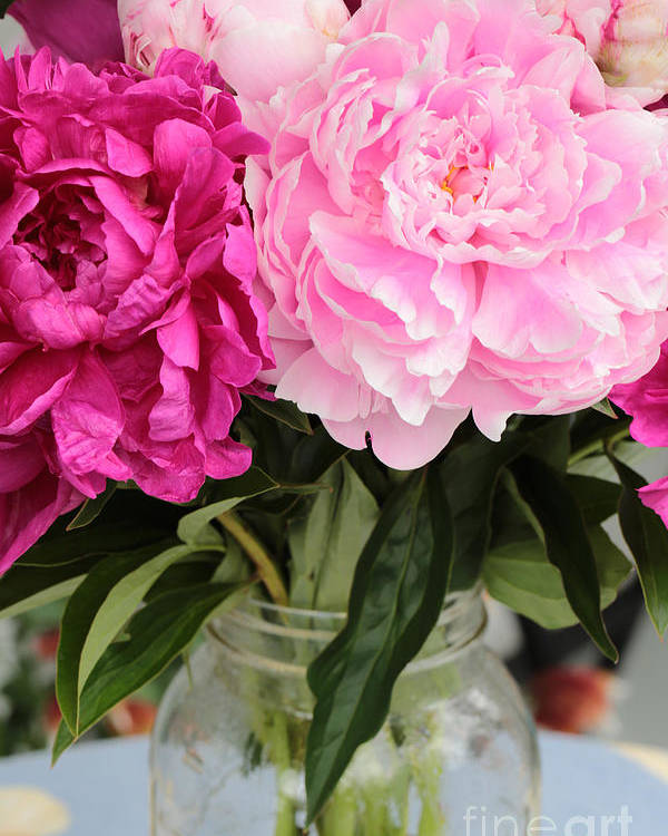 Pink Peony Poster featuring the photograph Pretty Pink Peonies In Ball Jar Vase by Carol Groenen