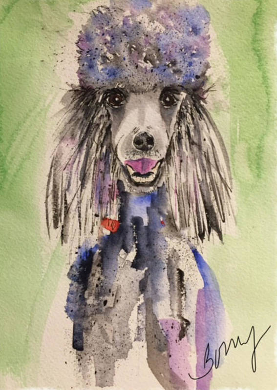 Dog Poster featuring the painting Primp by Bonny Butler