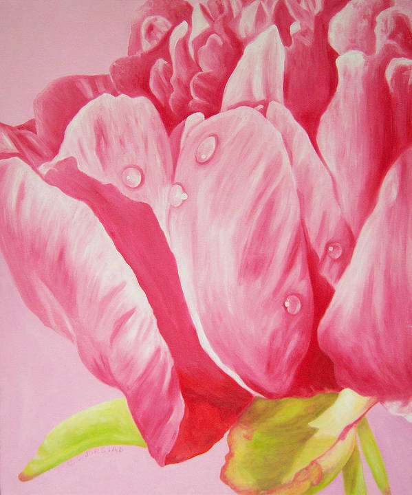 Fine Art Poster featuring the painting Prints Art For Sale Floral Oil Painting Pink by Diane Jorstad