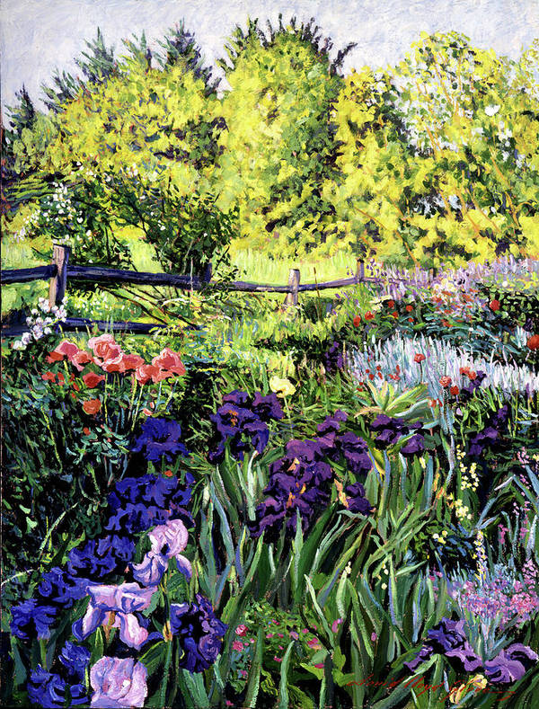Irises Poster featuring the painting Purple Garden by David Lloyd Glover