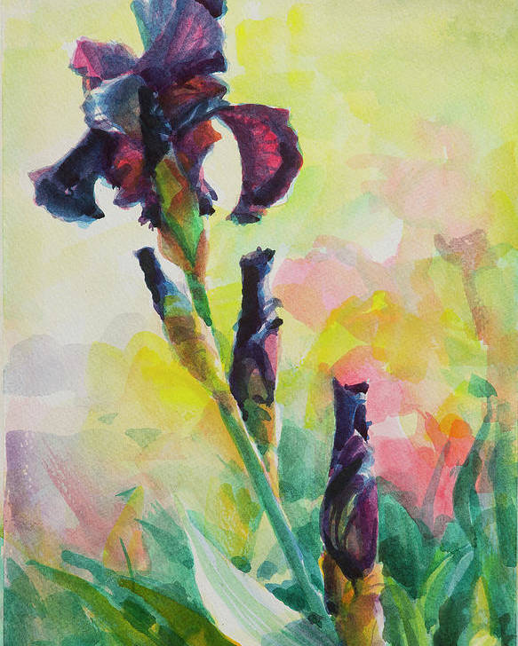 Flower Poster featuring the painting Purple Iris by Steve Henderson