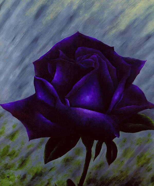 Rose Poster featuring the painting Purple Rose by Brandon Sharp