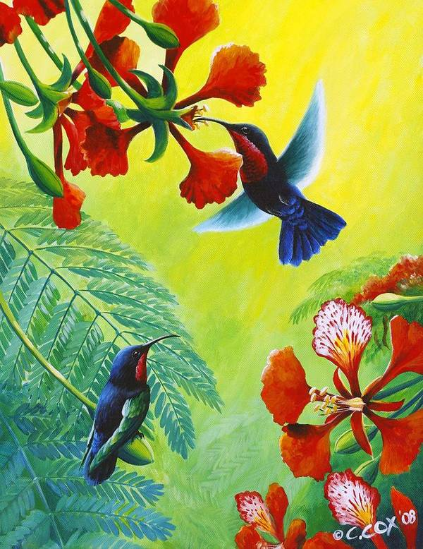 Chris Cox Poster featuring the painting Purple-throated Caribs And Flamboyant by Christopher Cox