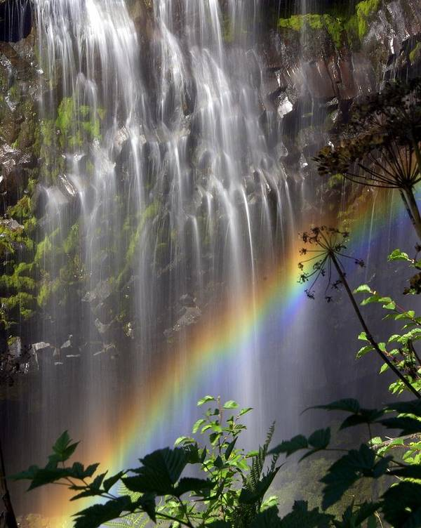 Waterfall Poster featuring the photograph Rainbow Falls by Marty Koch