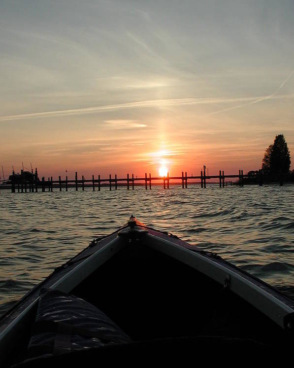 Rappahannock River Poster featuring the photograph Rapphannock Kayak Sunset by Kent Clizbe