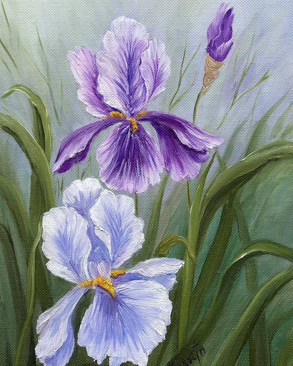 Painting Paintings Poster featuring the painting Rapsody Iris by Marveta Foutch