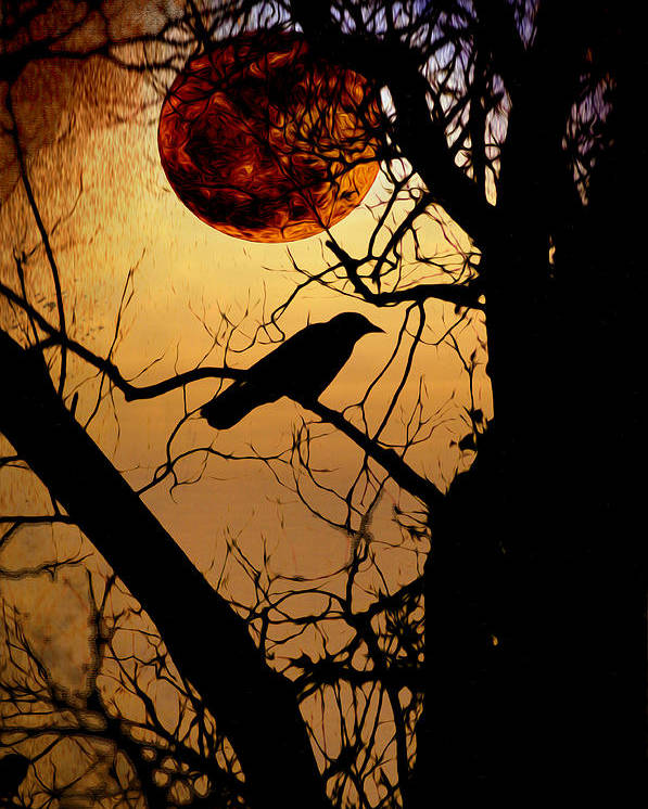 Raven Moon Poster featuring the photograph Raven Moon by Bill Cannon
