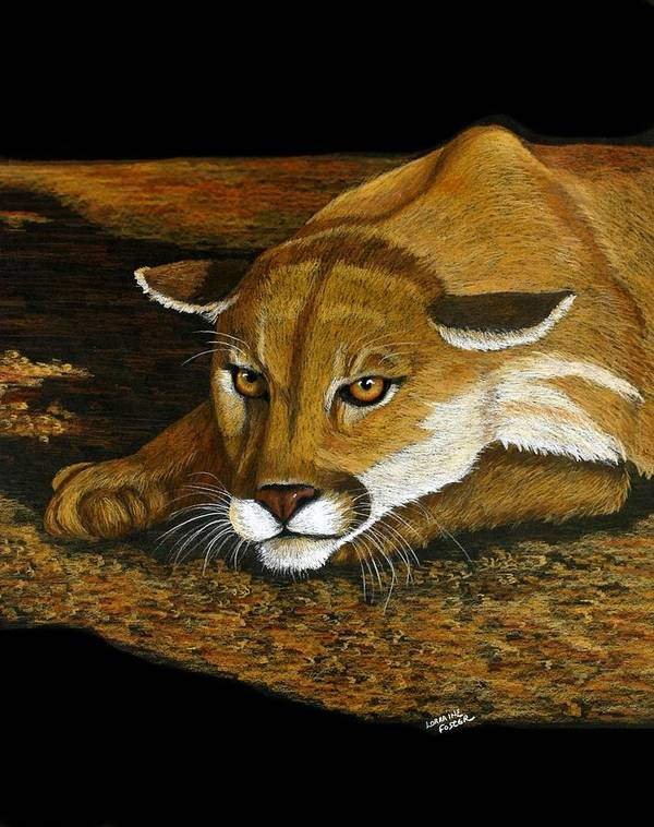 Animal Poster featuring the mixed media Ready To Pounce by Lorraine Foster