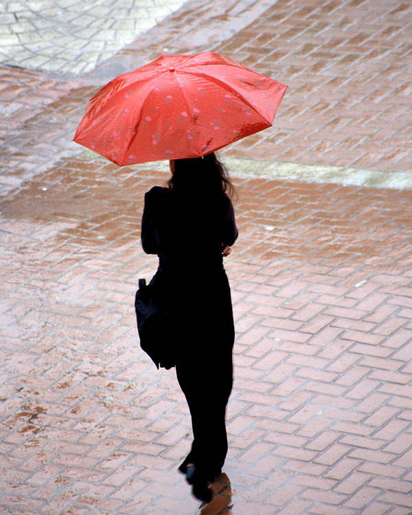 Rain Poster featuring the photograph Red 2 - Umbrellas Series 1 by Carlos Alvim