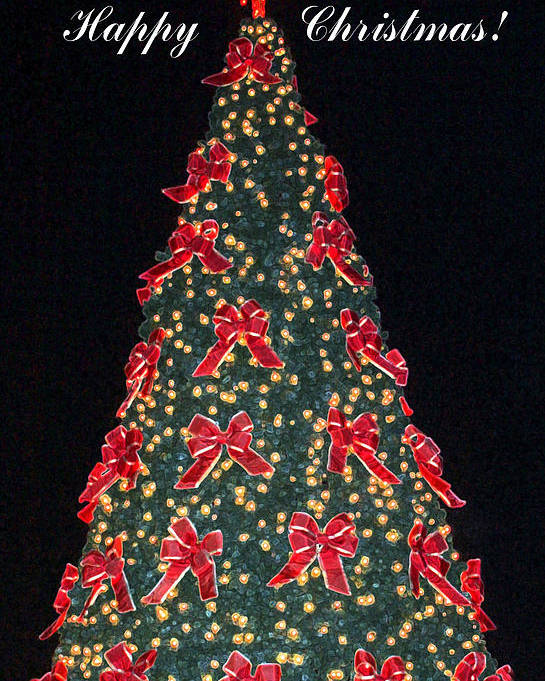 Christmas Poster featuring the photograph Red Bow Tree by Ellen Barron O'Reilly