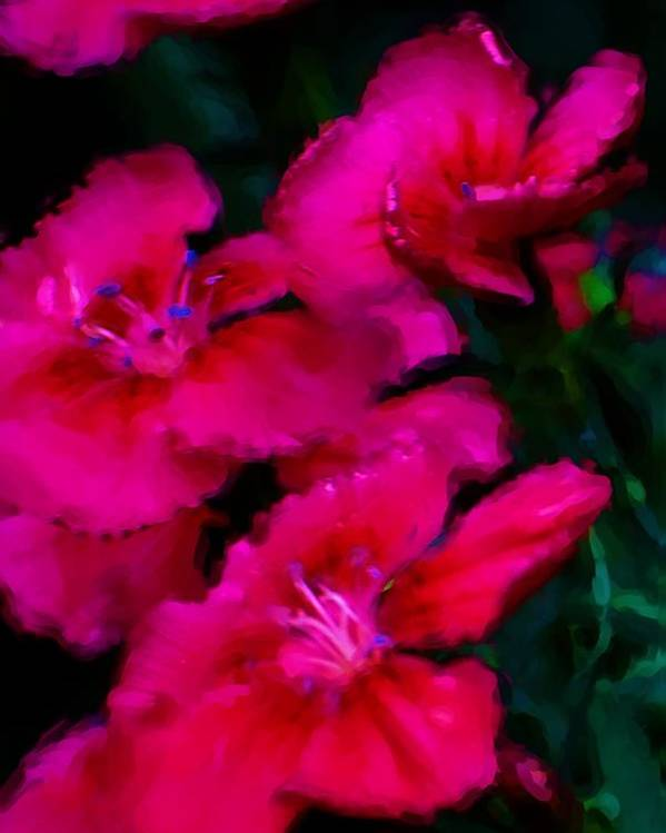 Floral Poster featuring the digital art Red Floral Study by David Lane