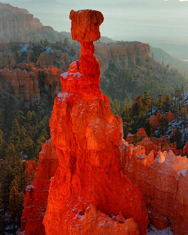 Bryce Poster featuring the photograph Red Glow Of The Sunrise On Thor's Hammer In Bryce Canyon by Pierre Leclerc Photography