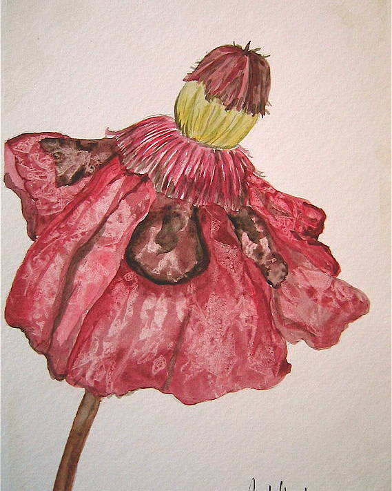 Original Art Poster featuring the painting Red Poppy by K Hoover