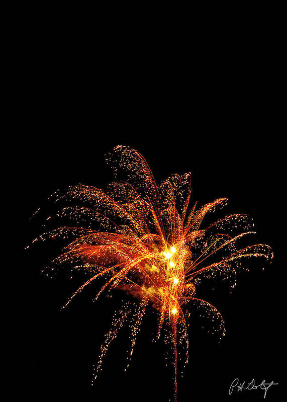 July 4th Poster featuring the photograph Red Splash by Phill Doherty