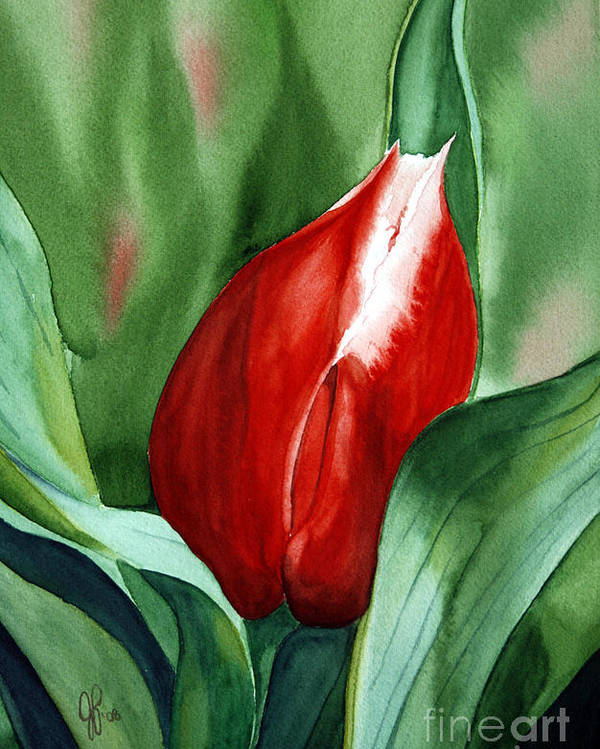 Macro Flower Poster featuring the painting Red Tulip 2 by Julie Pflanzer