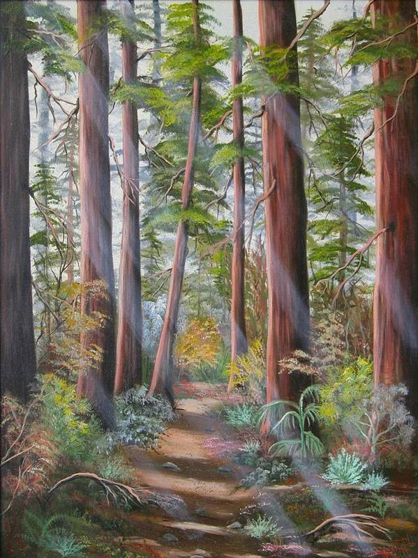 Landscape Poster featuring the painting Redwood Path by Joni McPherson