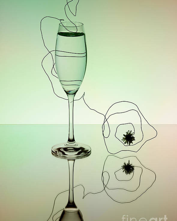 Glass Poster featuring the photograph Reflection by Nailia Schwarz