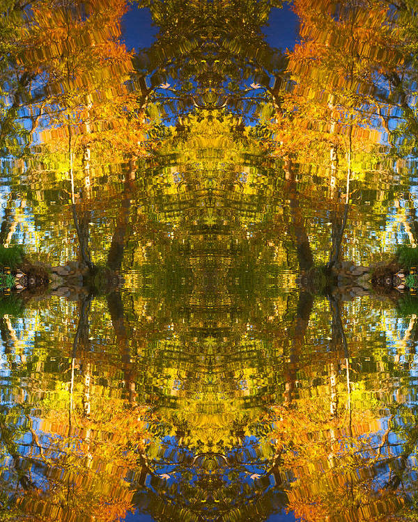 Abstract Poster featuring the photograph Reflections Trees And Water by Bob Coates