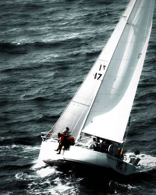 Sailing Poster featuring the photograph Regatta Sailboat Races by Sandy Buckley