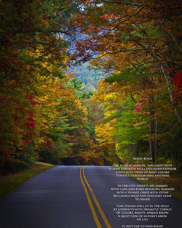 Blue Ridge Parkway Poster featuring the photograph Relief Road Blue Ridge Parkway by John Haldane