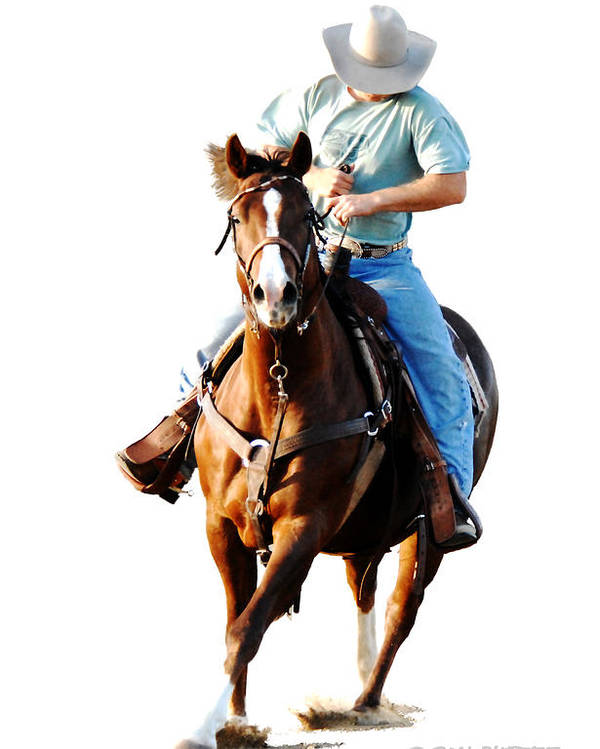 Cowboy Poster featuring the photograph Rider by Don Durfee
