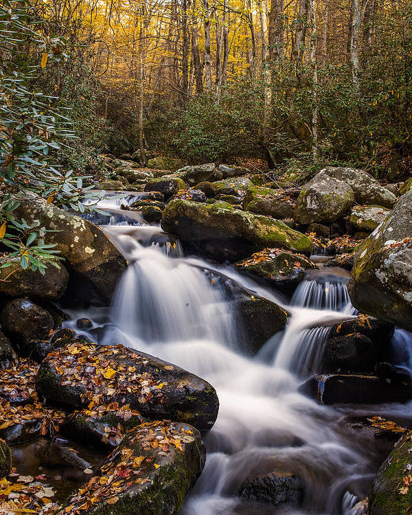 Waterfall Poster featuring the photograph Roaring Fork Waterfall At Autumn by Andrew Soundarajan